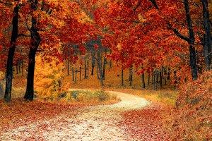 5 октября: какой праздник, приметы, суеверия, что нельзя делать