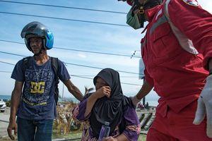Землетрясение в Индонезии: у побережья острова продолжают находить погибших
