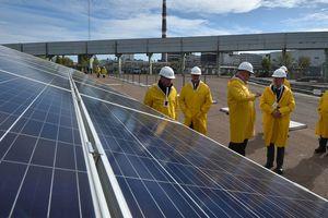 В Чернобыльской зоне запустили первую солнечную электростанцию