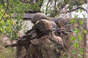 ВСУ взяли под контроль еще один населенный пункт на Донбассе: опубликовано видео