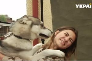 Во Львове ветераны АТО и бездомные собаки снялись в благотворительной фотосессии