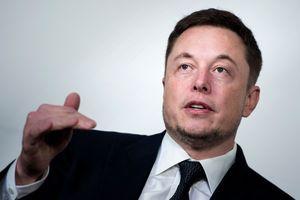 СМИ назвали имя возможного кандидата на пост Маска в совете директоров Tesla