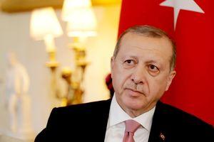 """""""Мы разорим гнезда террора"""": Эрдоган готовит войска для удара по Сирии"""