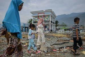 Землетрясение и цунами в Индонезии: число жертв достигло 2091