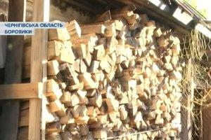 В Черниговской области селяне готовятся к отопительному сезону: заготавливают дрова и собирают ветки