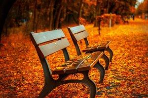 17 октября: какой праздник, приметы, суеверия, что нельзя делать