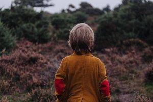Шестилетнего украинского мальчика чуть не депортировали из Швеции