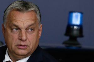 """Премьер-министр Венгрии Виктор Орбан """"усыновил"""" носорога - видео"""