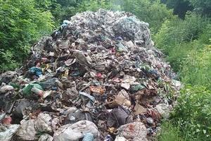 Свалка посреди поля: туристическая жемчужина Черниговской области утопает в мусоре