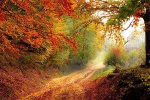 21 октября: какой праздник, суеверия, приметы, что нельзя делать