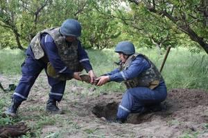 В селе Запорожской области нашли боеприпасы Второй мировой войны