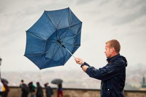 На Киев надвигается сильный ветер: киевлян просят быть осторожными