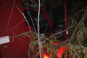 В Николаевской области грузовик слетел в кювет и врезался в деревья: погиб водитель