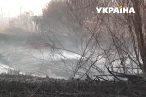 В Черниговской области горят десятки гектаров торфяников