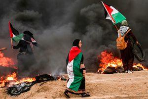Жертвами новых столкновений в секторе Газа стали четверо палестинцев, десятки раненых
