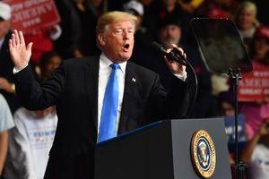 Трамп расскажет все о вмешательстве Кремля в выборы
