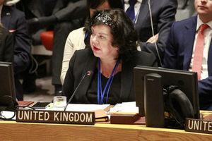 Восемь стран Евросоюза в ООН призвали РФ остановить подготовку к незаконным выборам на Донбассе