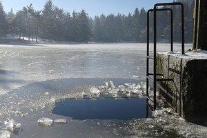 В Украине стартовал сезон моржевания