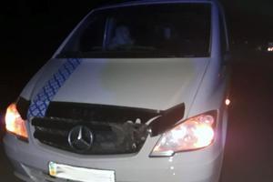 Смертельное ДТП под Житомиром: пешеход попал под колеса двух автомобилей
