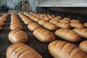 Сколько стоит хлеб в Украине: эксперты сравнили цены с Европой