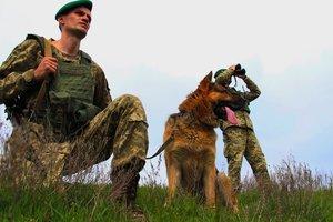 На Буковине десятки контрабандистов избили пограничников
