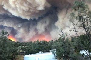 В Калифорнии снова бушуют лесные пожары