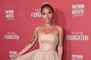 Словно королева: Леди Гага в платье Dior цвета пыльной розы