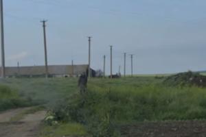 Готовим еду на костре, о нас забыли: село под Керчью оказалось в транспортной блокаде