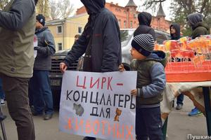 """""""Цирк - это концлагерь для животных"""": в Одессе требовали запретить шоу с дикими животными"""