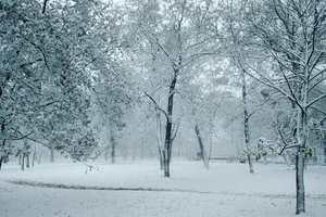 В Крым пришла зима: появились фото заснеженных улиц