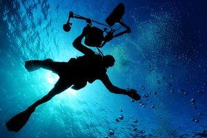 """В океане обнаружили """"танцующего"""" монстра: появилось видео"""