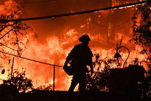 Самый разрушительный пожар в истории Калифорнии уничтожил тысячи домов