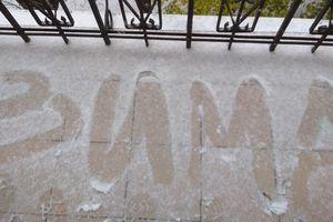 Киев заметает первым снегом