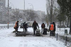На Оболони прямо в снег коммунальщики укладывают асфальт