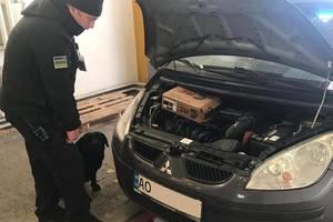 На границе умный пес не пропустил машину из Венгрии, набитую патронами