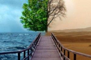 Запорожская область начала входить в тропическую зону - метеоролог