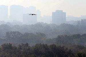 Качество воздуха в Киеве проверят за два миллиона гривен