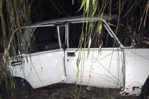 В Житомирской области легковушка врезалась в дерево: есть погибший и пострадавшие