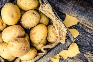 Как есть картофель, чтобы не поправиться: советы диетологов