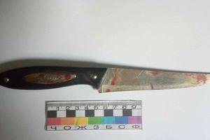 В Днепропетровской области юноша с ножом напал на младшую сестру