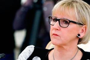 В МИД Швеции рассказали, что может произойти с Донбассом
