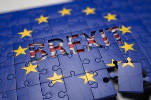 Реальная угроза Brexit: партия-карлик не даст Терезе Мэй заключить сделку с ЕС
