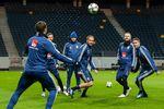 Тренировка сборной Швеции. Фото AFP