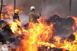 На Закарпатье возле электроподстанции пылал деревянный склад: пламя тушили четыре часа
