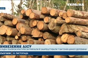 """ГПУ """"накрыла"""" крупную партию контрабандной ценной древесины"""