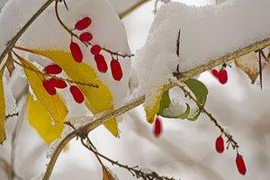 24 ноября: какой сегодня праздник, приметы, что нельзя делать