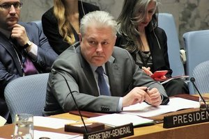 В ООН Украина призвала ввести санкции против российских портов в Азове