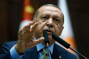После переговоров с Порошенко и Путиным у Эрдогана озвучили позицию по Азову