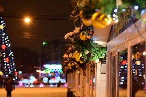 Рождественское чудо: в Дортмунде установили самую высокую новогоднюю елку