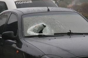 В Мелитополе пешеход головой разбил стекло автомобиля: опубликованы фото